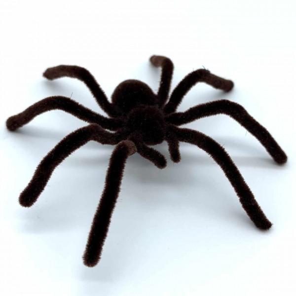 Große Spinne